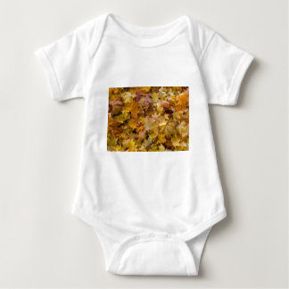 Maple Tree Fall Leaves Background Baby Bodysuit