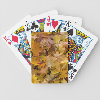 Maple Tree Fall Leaves Background Bicycle Playing Cards