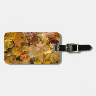 Maple Tree Fall Leaves Background Luggage Tag