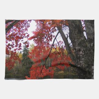 Maple Tree Kitchen Towel
