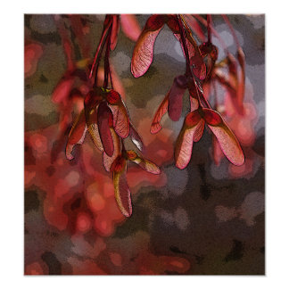 Maple Tree Spring Helicopters Poster