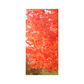 Maple Tree with Fall Colors Watercolor Canvas Print