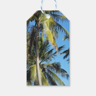 Maragogi palms gift tags