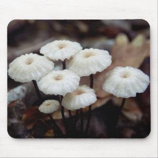 Marasmius rotula Mushroom Mouse Pad