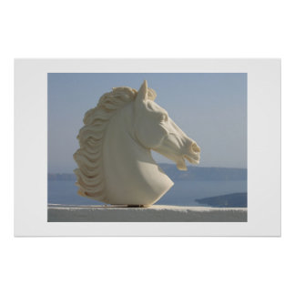 Marble horse head poster