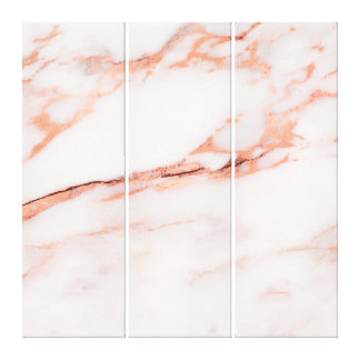 Marble Stone Abstract RoseGold White Coral Carrara Canvas Print