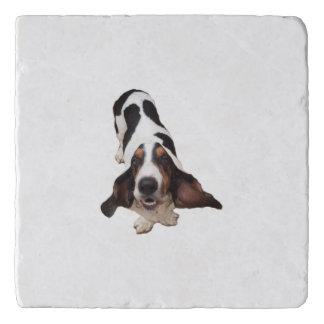 Marble Stone Trivet w/ basset hound