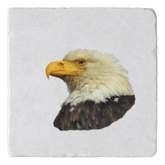 Marble Stone Trivet w/ eagle