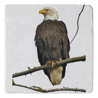 Marble Stone Trivet w /eagle