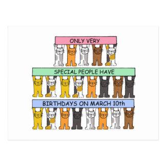 March 10th Birthday Cats Postcard