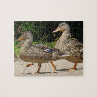 March of the Ducks Jigsaw Puzzle