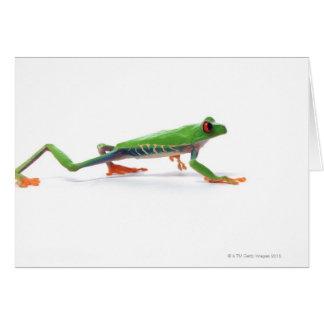 Marche observée par rouge de grenouille d arbre cartes de vœux