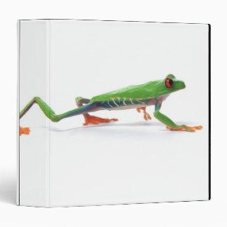 Marche observée par rouge de grenouille d arbre