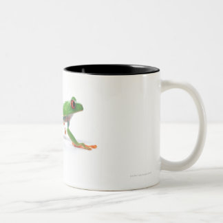Marche observée par rouge de grenouille d'arbre tasses