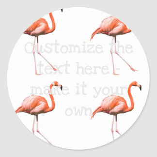 Marching Flamingos Classic Round Sticker