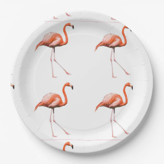 Marching Flamingos Paper Plate