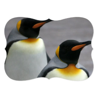 """Marching Penguins 5"""" X 7"""" Invitation Card"""