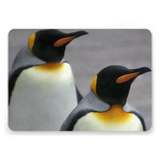 Marching Penguins Custom Invite