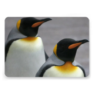Marching Penguins Personalized Invite