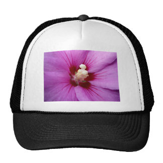 Marco flower trucker hat