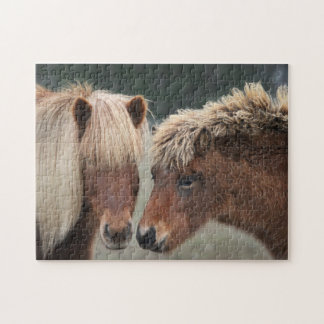 Mare and Foal Icelandic Horse Puzzle