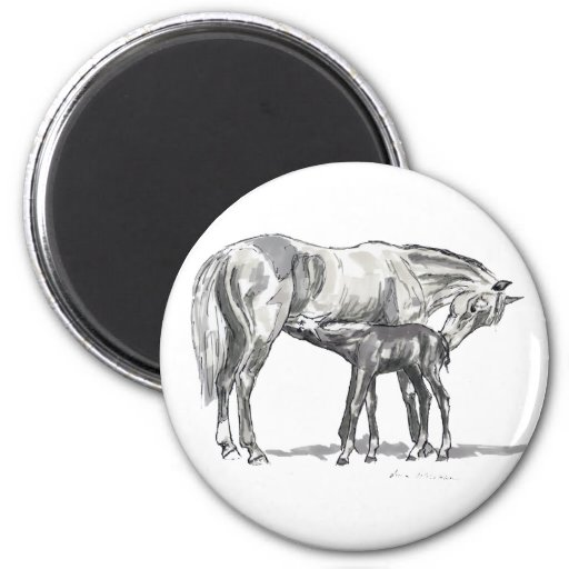 Mare and Foal Magnets