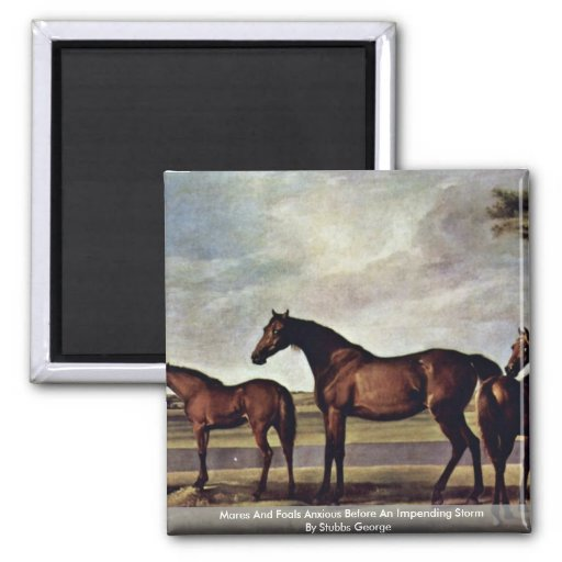 Mares And Foals Anxious Before An Impending Storm Refrigerator Magnets
