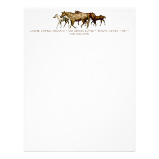 Mares and Foals Drawing Letterhead