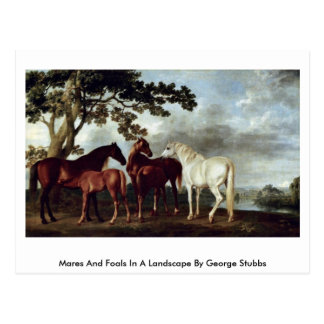 Mares And Foals In A Landscape By George Stubbs Postcard