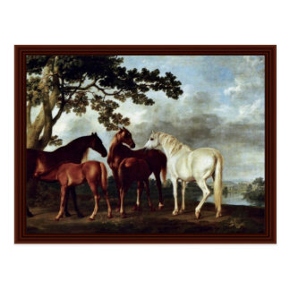 Mares And Foals In A River Landscape Postcard