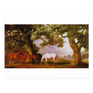 Mares and Foals in a Wooded Landscape by George Postcard