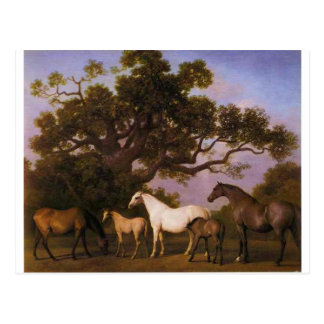 Mares and Foals under an Oak Tree by George Stubbs Postcard