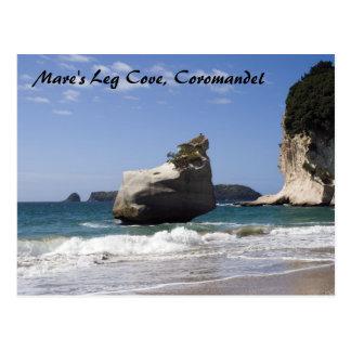 Mare's Leg Cove, Coromandel Postcard