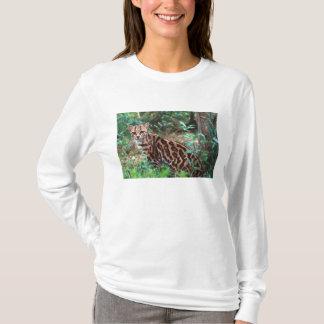 Margay, Leopardus wiedi, Native to Mexico into T-Shirt