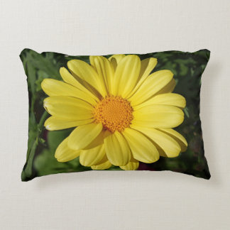 Marguerite Daisy Summer 2015 Accent Pillow