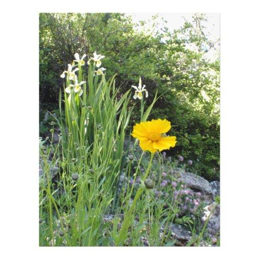 Marguerite jaune et iris blancs en-tête de lettre avec motif