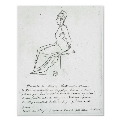 Marie-Antoinette's way to her execution Print