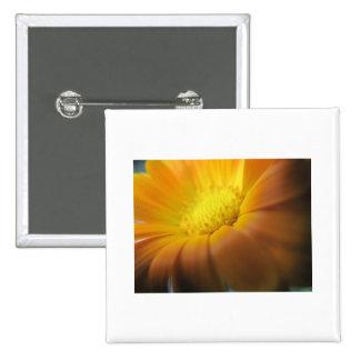 Marigold 2 Inch Square Button