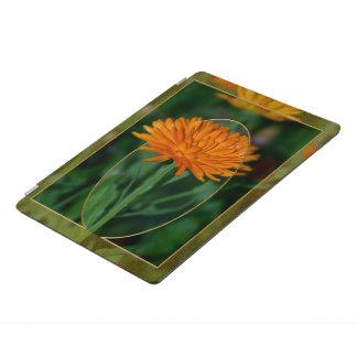 Marigold 2 iPad pro cover
