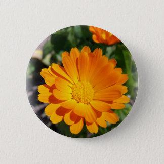 marigold flower 2 inch round button