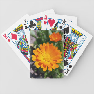 marigold flower bicycle playing cards