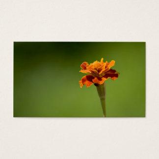 Marigold Flower Closeup Business Card