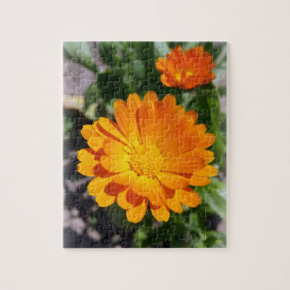 marigold flower jigsaw puzzle