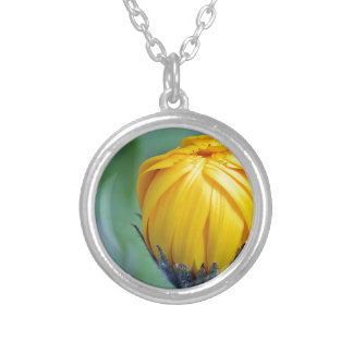 marigold silver plated necklace