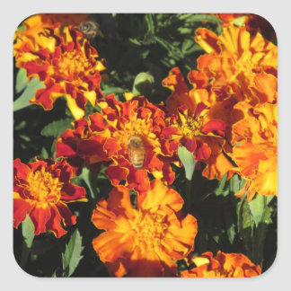Marigolds with a Bee Square Sticker