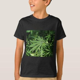 Marijuana t shirt