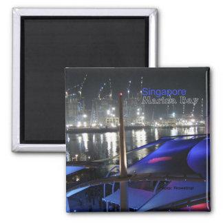 Marina Bay Singapore Travel Fridge Magnets