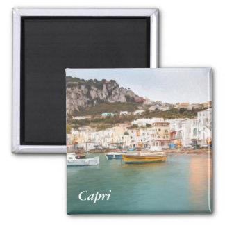 Marina Grande, Capri, Campania, Italy Magnet