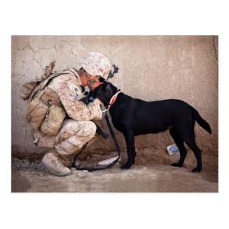 Marine and His Dog Postcard