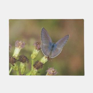 Marine Blue Butterfly Doormat